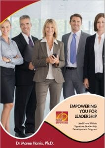 Lead From Within Brochure